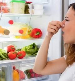 年关将至,囤年货时更要关注冰箱健康!