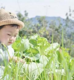 孩子春季长身体,健康饮食搭配无缝吸嘴美国水杯成上选 发下