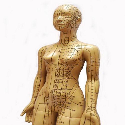 经络穴位是天然药库 蕴含着人体强大的自我调整功能