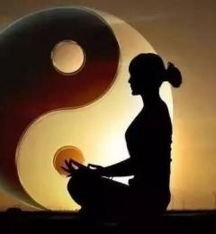 保养五脏气 维持体内的阴阳平衡