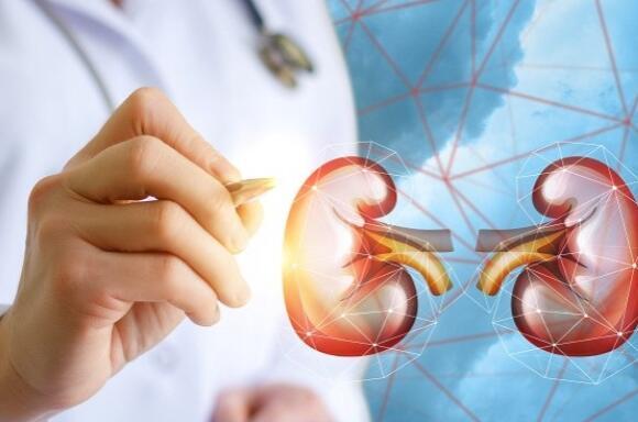 40过后肾脏功能快速下降 预防肾脏病定期检查是关键