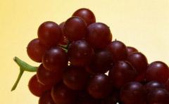 多吃葡萄,有效排毒养颜